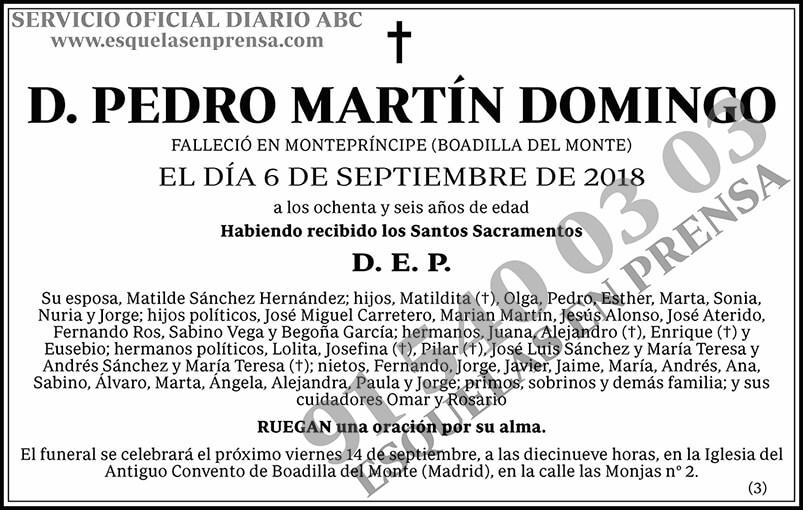 Pedro Martín Domingo